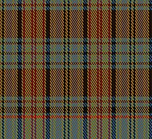 02614 Dunbarton Warp-Weft District Tartan Fabric Print Iphone Case by Detnecs2013