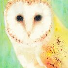 Barn Owl by Catherine Gabriel