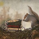 Winter Squirrel by Pat Abbott
