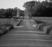 long and loney road by Matthew Reed