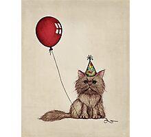 Kitty Celebration Photographic Print