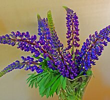 Luscious Lupin by Lesliebc