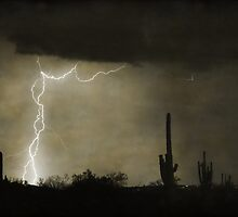 Twisted Desert Lightning Storm by Bo Insogna