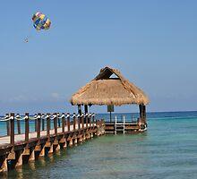 Caribbean... by Cindy Rubino