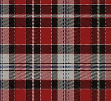 02635 Lehigh County, Pennsylvania E-fficial Fashion Tartan Fabric Print Iphone Case by Detnecs2013