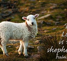 Lord Is My Shepherd Psalm 23 by Andy Merrett