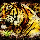 Tiger Artwork Wild Animal Kanji Tiger by Val  Brackenridge