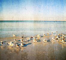 Beach Combers - Seagull Art by Sharon Cummings by Sharon Cummings