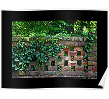 Planting Fields Arboretum State Historic Park Red Brick Wall Covered With Ivy - Upper Brookville, New York Poster