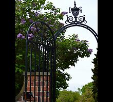 Planting Fields Arboretum State Historic Park Vintage Wrought Iron Gate Detail - Upper Brookville, New York by © Sophie W. Smith