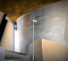Walt Disney Concert Hall by Thad Zajdowicz