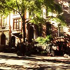 Manhattan Brownstones by Vivienne Gucwa