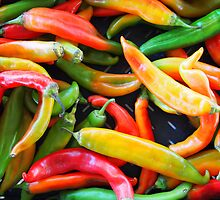 Peppers by Jenna Boettger Boring