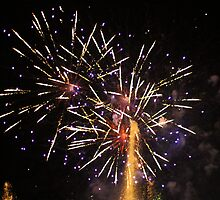 Vivid 2013 - Darling Harbour Fireworks 3 by Kezzarama