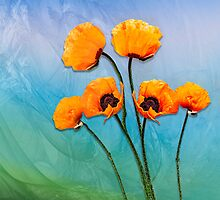 Poppy Flowers! by LudaNayvelt