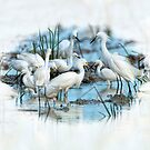 Snowy Egrets in Rice Field by Bonnie T.  Barry