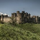 Alnwick Castle by Andrew Pounder