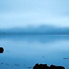 Blue Water Mist(Loch Fleet) by David Harnetty