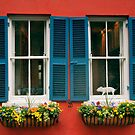Windows With Teal Shutters - Charleston, SC by JHRphotoART