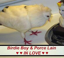 Birdie Boy and Porce Lain - IN LOVE (video) by Jaeda DeWalt