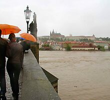 Prague flood by jayview