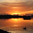 molten gold dawn in St Helens by gaylene