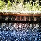 Train Tracks by rapplatt