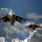 Harrier Approach by J Biggadike