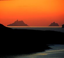 Skellig Islands  by aidan  moran