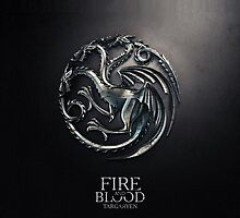 Game of Thrones Fire and Blood iPhone Case by jlerner