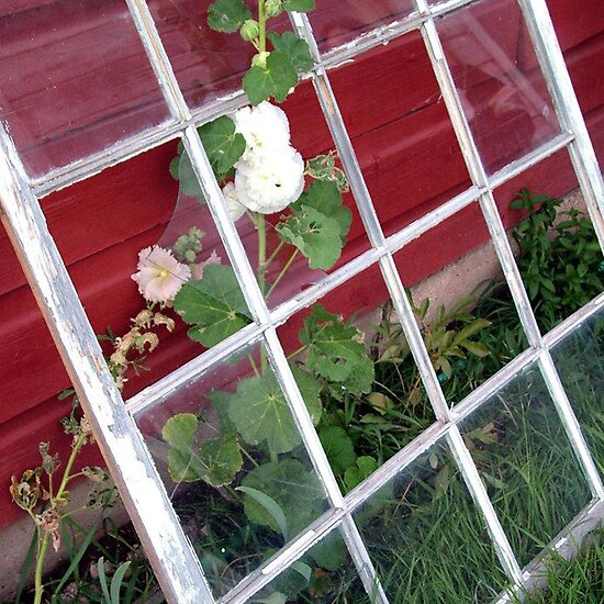 Window Garden by Loree McComb