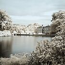 England - Dunham Massey Pond by Kaitlin Kelly