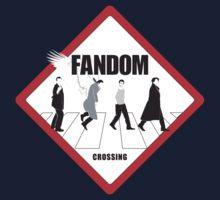 Fandom Crossing v.1 by kldpetriedesign