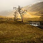 Scottish Highlands Rainbow by cieniu1