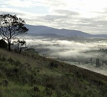 Fog in Bega Valley, NSW, Australia 2013 by muz2142