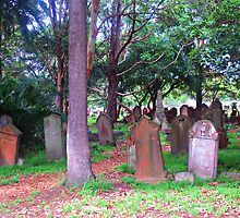 Old Graves 2 - Camperdown Cemetery NSW by deecee267
