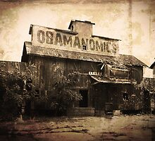 Obamanomics by morningdance