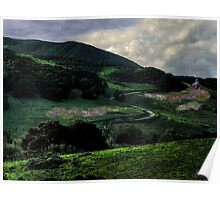 Lupine Magic on a Winding Road Poster