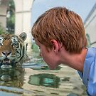 Eye to Eye with Mike the Tiger by Bonnie T.  Barry