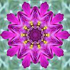 My Purple Flower by aprilann