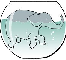Elephant Swimming around in Goldfish Bowl by astralsid