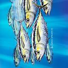 Yellowfin Tuna by David Pearce