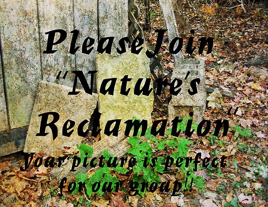 Banner for Nature's Reclamation by teresa731