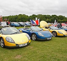 Renault Cars by Keith Larby