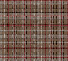 02737 Durham County, North Carolina E-fficial Fashion Tartan Fabric Print Iphone Case by Detnecs2013