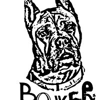 Boxer Dog by ritmoboxers