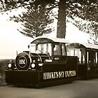 The Hawke's Bay Express along Marine Parade by SeeOneSoul