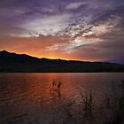 Little Washoe Sunset by Dianne Phelps