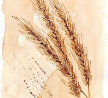 Golden Wheat by Maree  Clarkson
