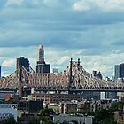 The 59th Street Bridge by tori yule
